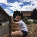 Weeding along the fence